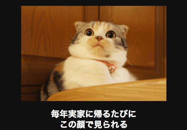 スクリーンショット 2015-11-04 16.59.59