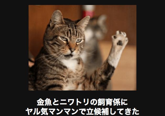 スクリーンショット 2015-11-04 17.14.55
