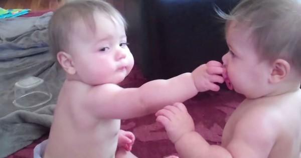 赤ちゃん 争奪戦2