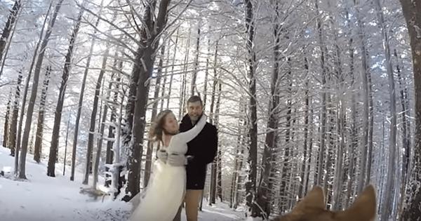 ワンコの視点で撮影!美しい雪の中でのウエディング風景が幸せいっぱい