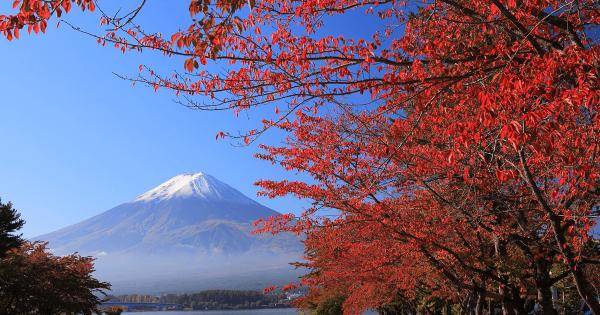 日本に住んではいけない13の理由
