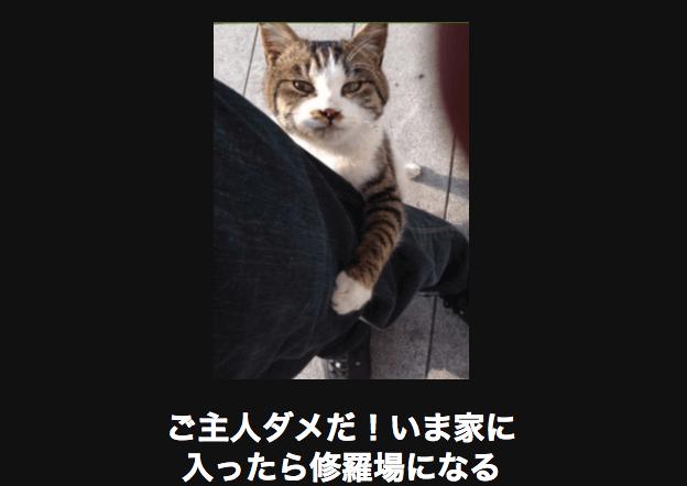 スクリーンショット 2015-11-04 16.53.53