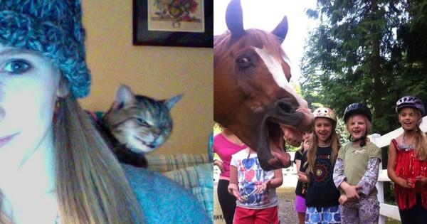 120%狙ってただろ!(笑) 写真に「偶然」映り込む動物が完全にワザとな件(13選)