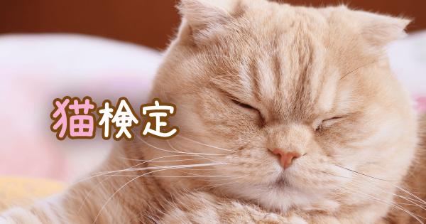 猫検定アイキャッチ
