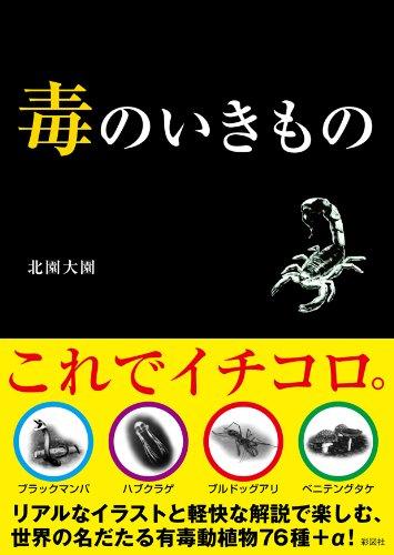 帯7 (1)