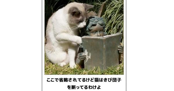 【キケン注意】電車や職場で読んではいけない猫のボケて15選