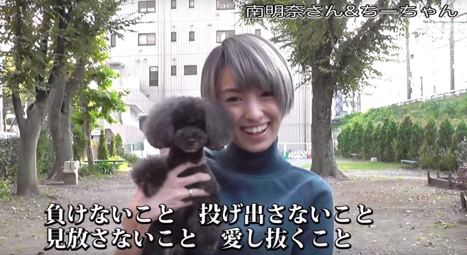 犬猫 PR 4
