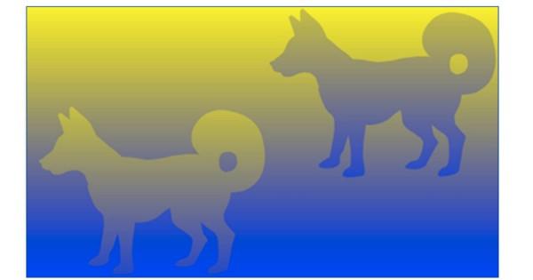 【この2匹の犬、実は同じ色です】思わず「はっ?!」と言ってしまった錯覚画像9選