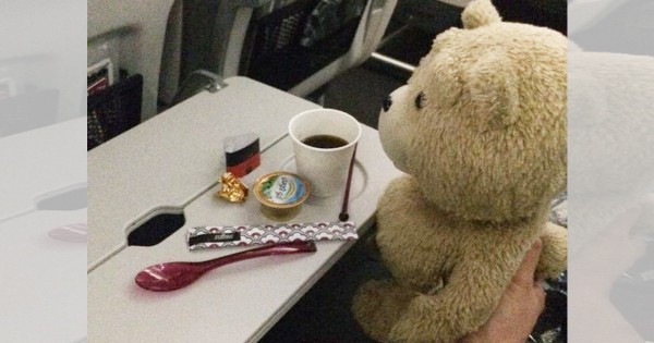 この気遣いは素敵!飛行機でテッドを隣に座らせてみたら驚きの展開に