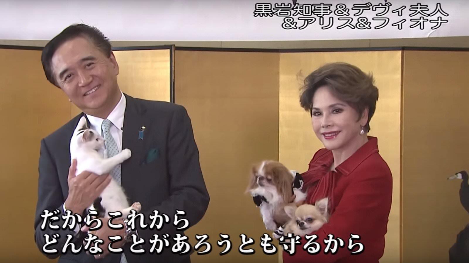 犬猫 PR 7