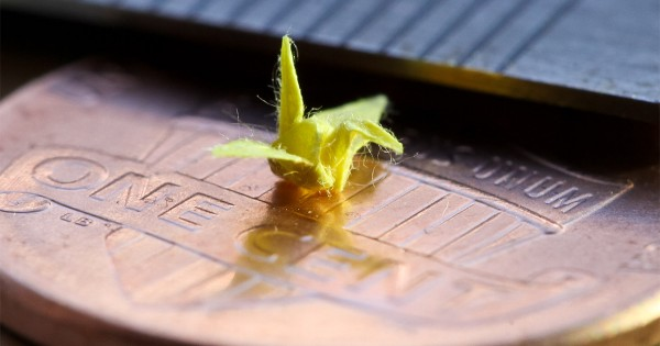 日本人が見ても驚き! 海外の方が作った「小さすぎる折り鶴」に驚きと賞賛の声が集まる