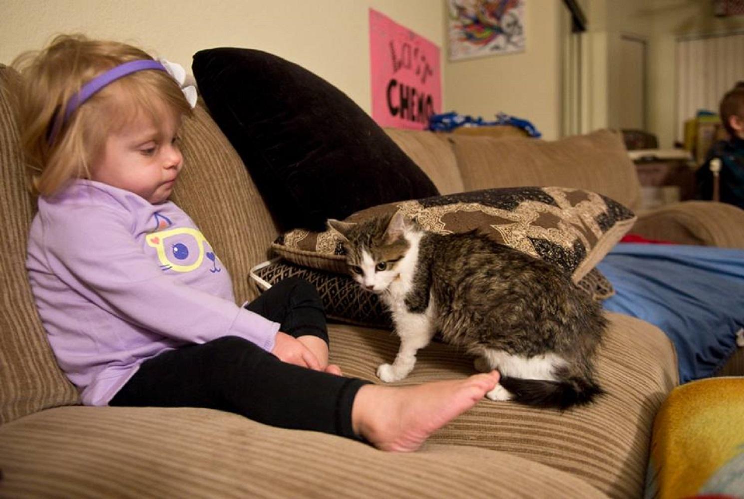 少女 猫 片腕5
