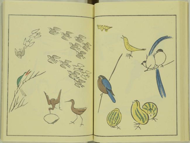 ゆるかわ 鳥獣戯画17