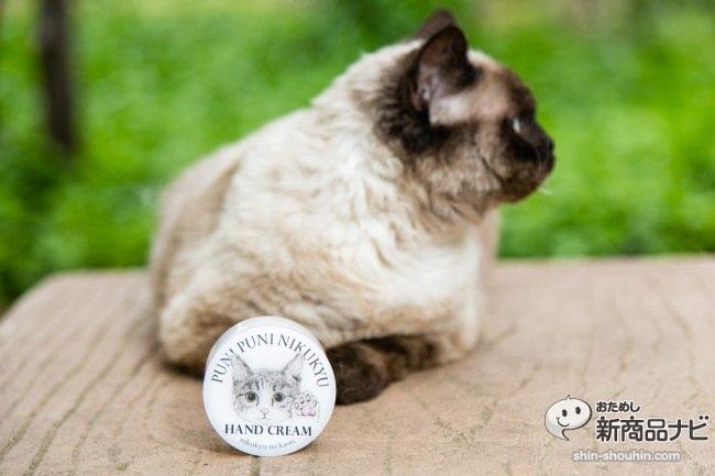 猫 ハンドクリーム4