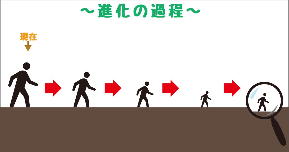 進化ー縮小