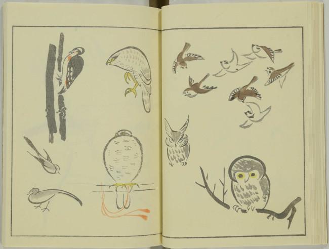 ゆるかわ 鳥獣戯画15