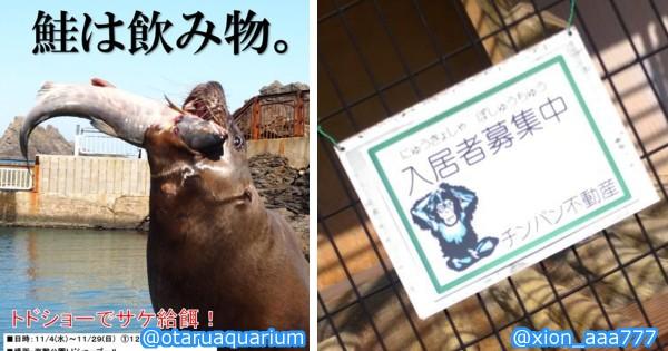 スタッフの本気を見た! 動物園で動物以上に興味をそそられた光景14選