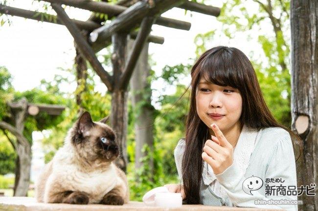 猫 ハンドクリーム5