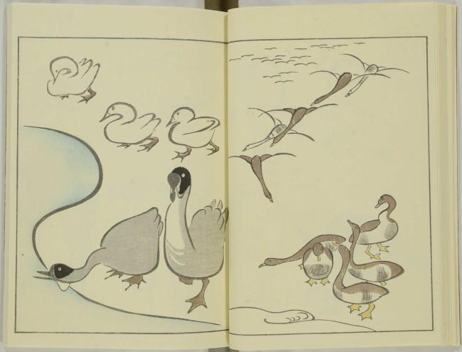 ゆるかわ 鳥獣戯画11