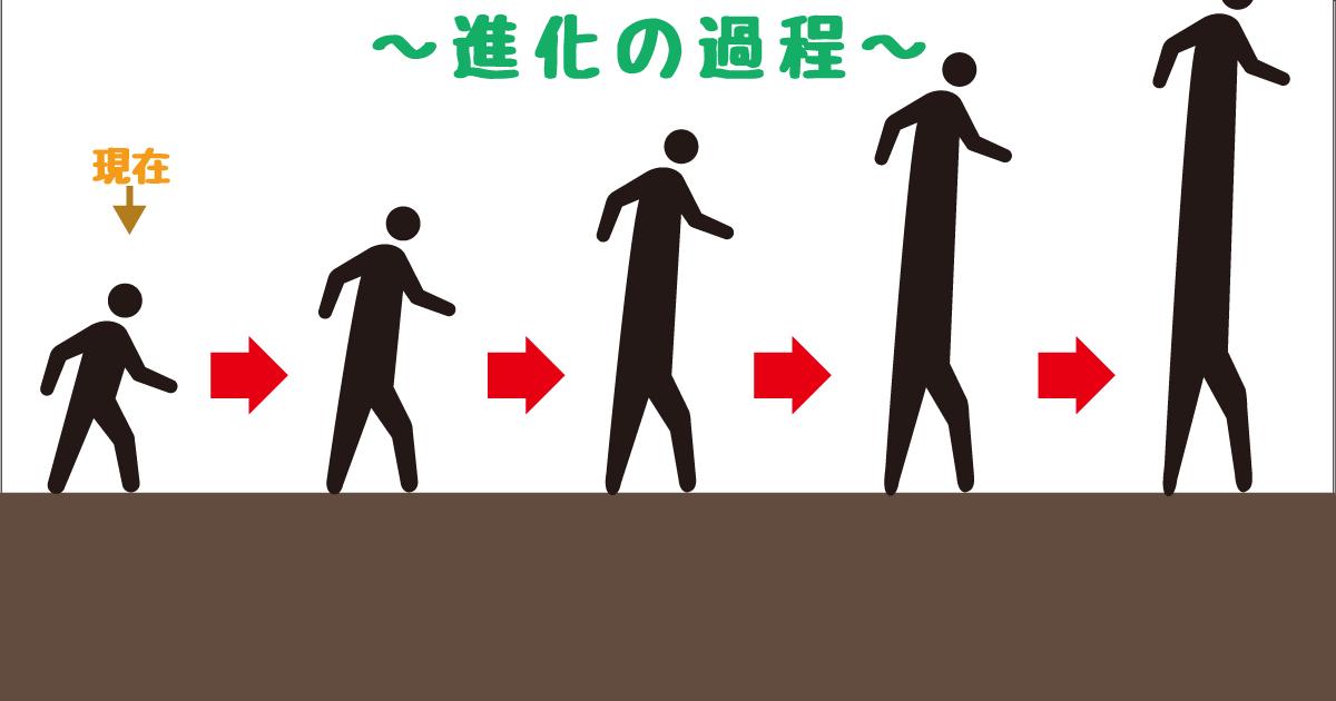 進化−胴長