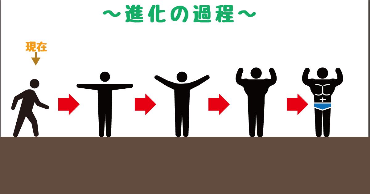 進化−筋肉