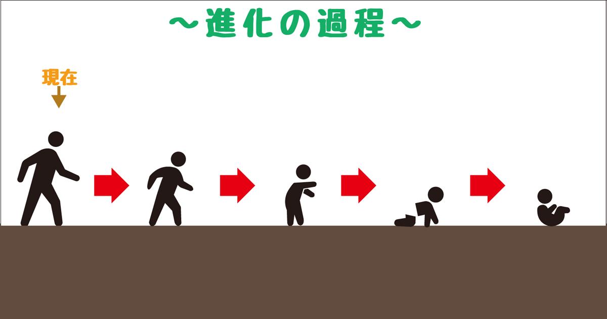 進化−退化