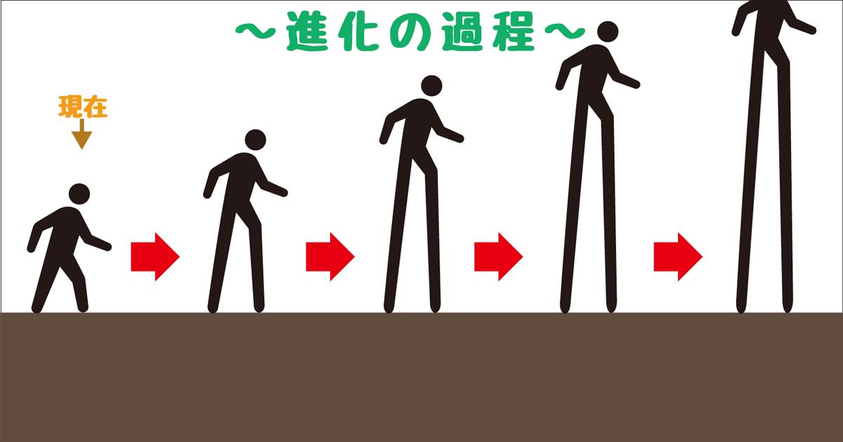 進化−脚長