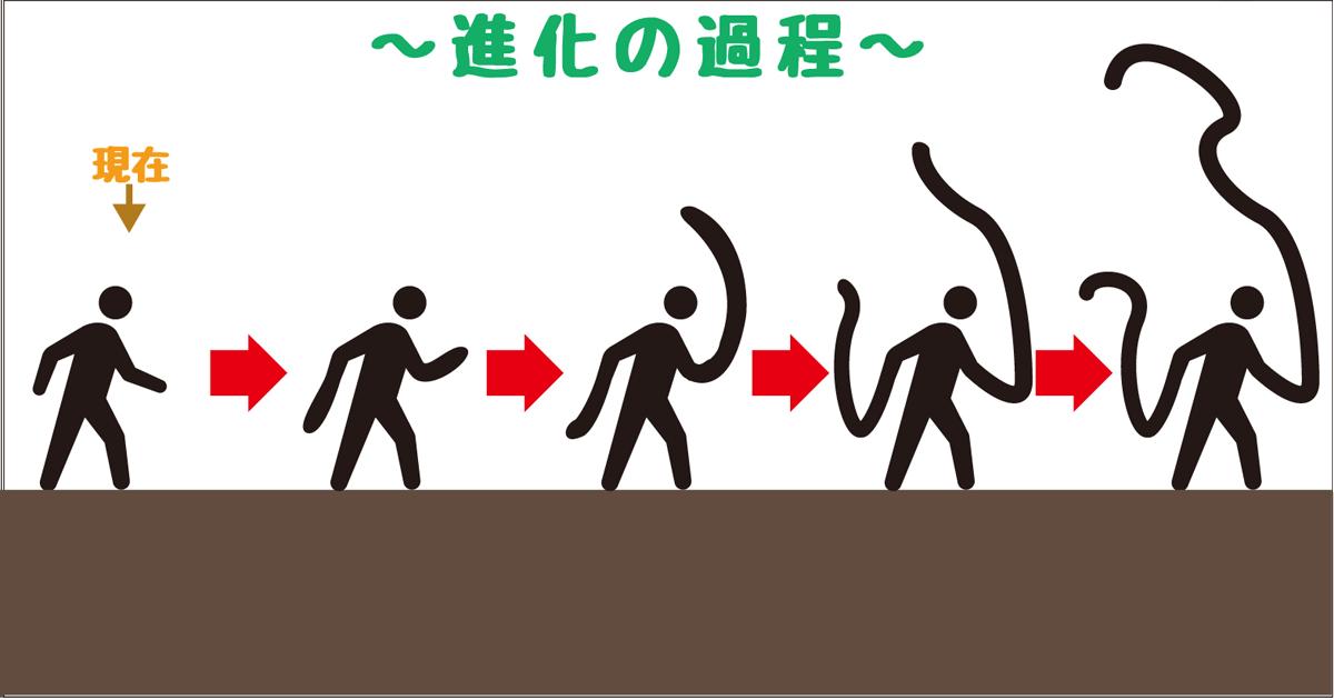 進化−腕長