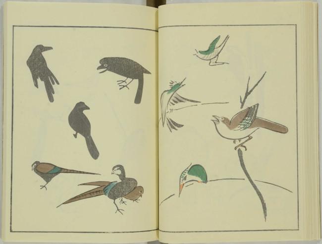 ゆるかわ 鳥獣戯画16