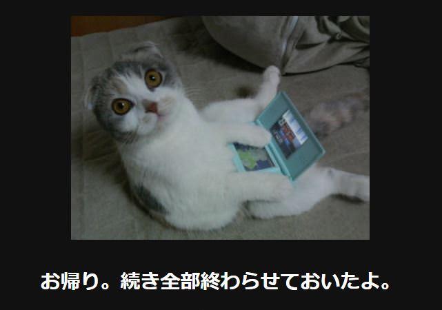 大喜利 猫24