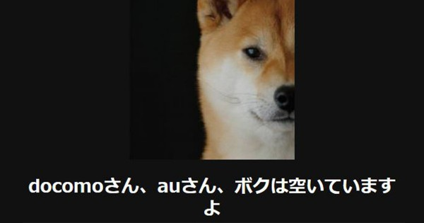 【腹筋ガタガタ】3連休に華を添える犬の大喜利11選