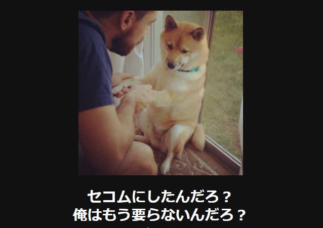 大喜利 犬3