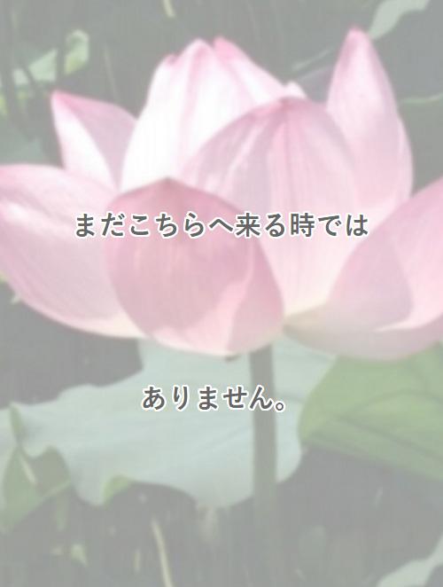 cap_19