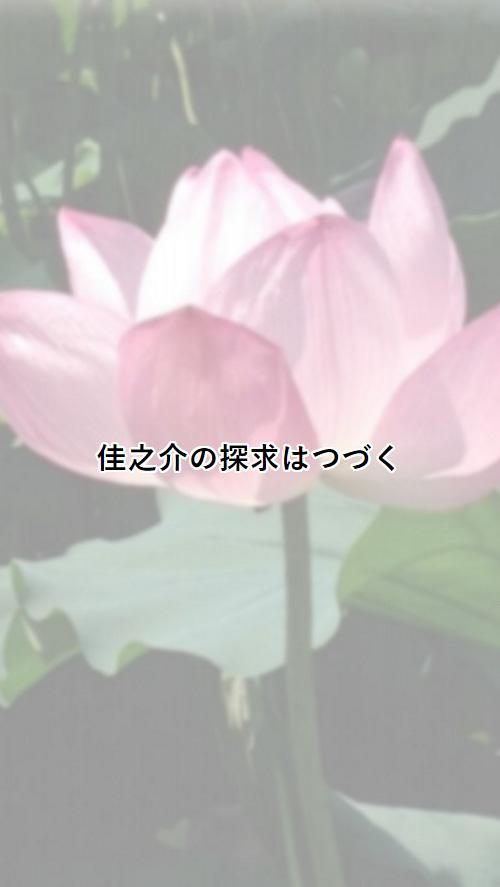 cap_25