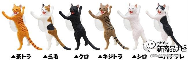 猫 吸盤5