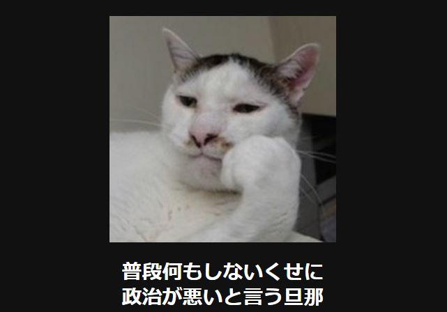 大喜利 猫41
