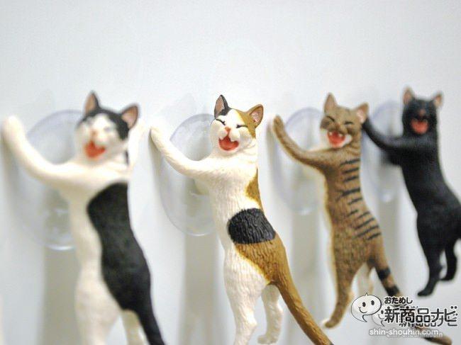 猫 吸盤8