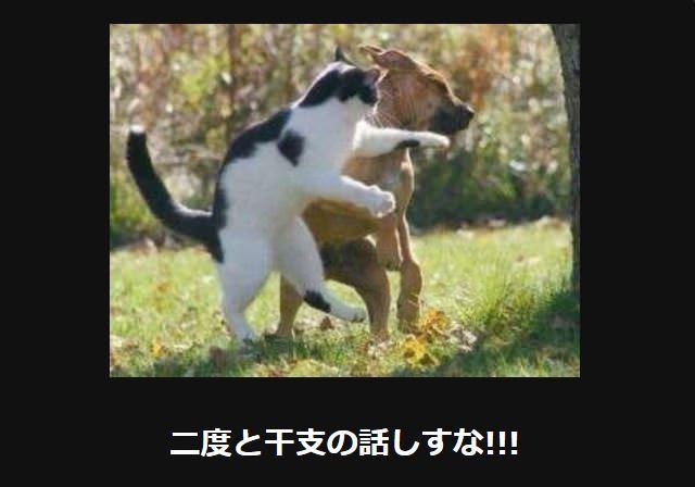 大喜利 猫28