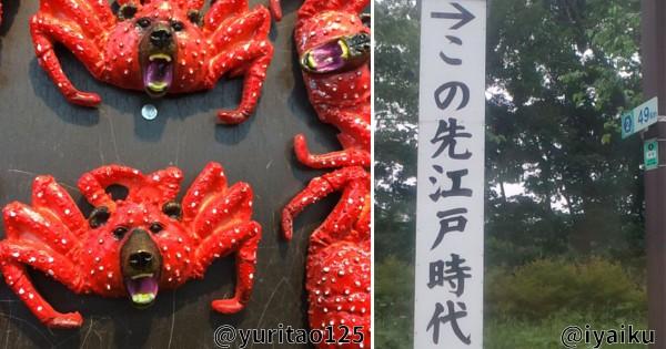 道民にはあるある?北海道に行って「なまらたまげたコト」9選