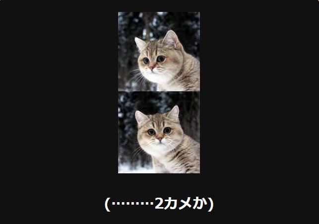 大喜利 猫27