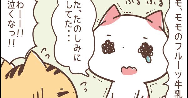 【お風呂上がりの一杯は最高♪】関西弁にゃんこ 第9弾