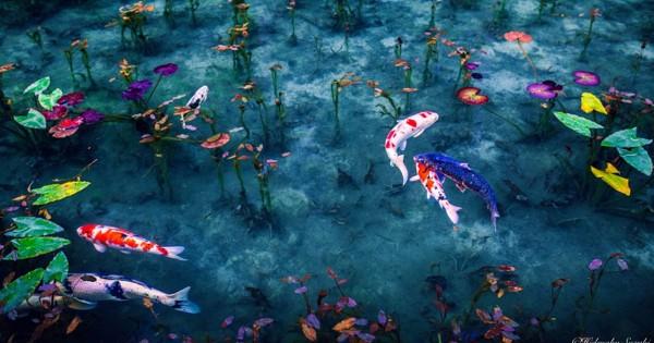 まるで絵画!梅雨の日本を撮影した日本人フォトグラファーの写真に世界が感動