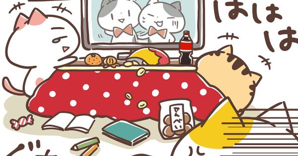 【決して終わらないエンドレス大掃除・・・】関西弁にゃんこ 第11弾