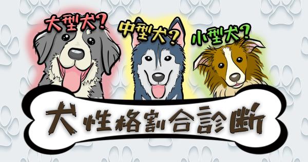 【大型犬?小型犬?それとも中型犬?】あなたの犬性格割合診断