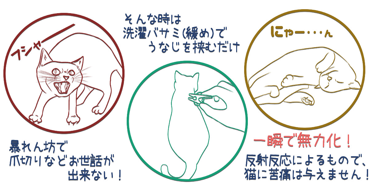 暴れん坊ニャンコを無力化!猫のうなじに洗濯バサミを挟むと一瞬…