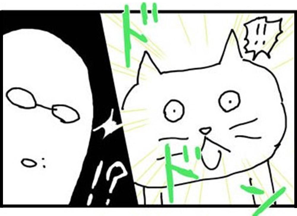 猫と仲良くなりたいなら猫語を学べ!