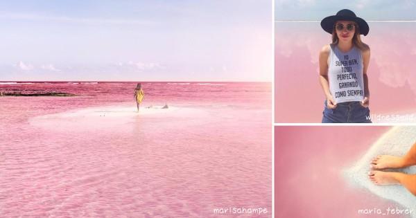 世界中の旅行者を魅了!メキシコの「ピンクラグーン」がこの世の景色とは思えない美しさ