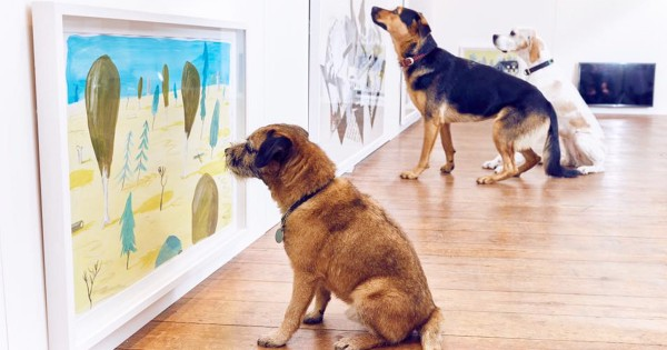 散歩に飽きたワンコ歓喜!世界初「犬のための展覧会」が開催され衝撃が走る