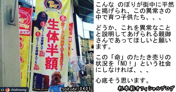「命のたたき売りにNOを!」 ペットの値引き販売を危惧する杉本彩のブログに賛同の声