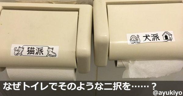 どっちも可愛いでいいじゃない!日本は犬派と猫派で争うのが好きだとわかる7選